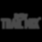 TraiMix_logo.png