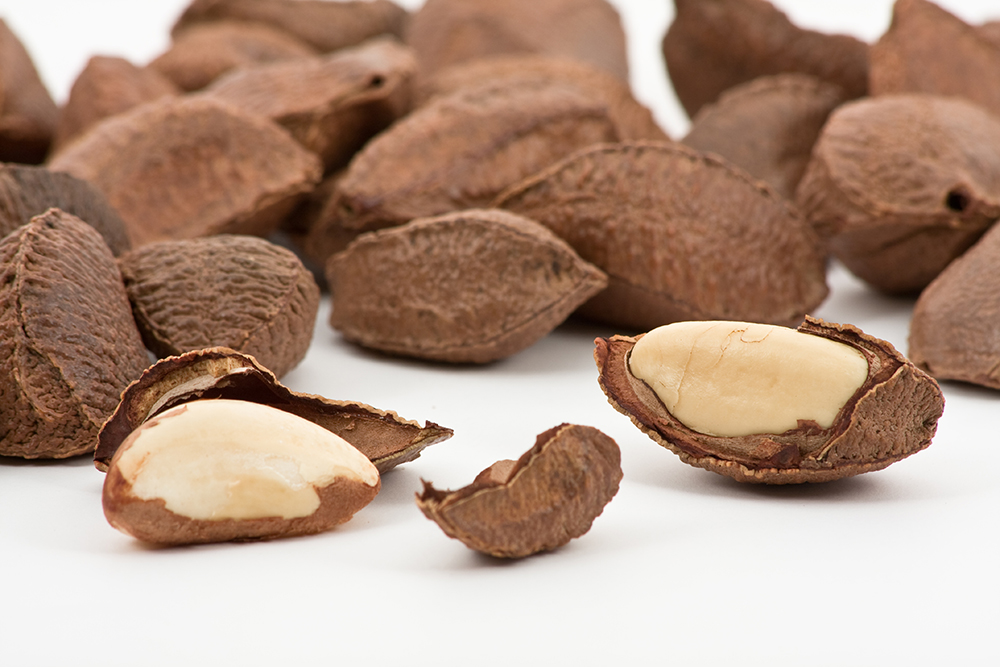brazil-nuts-in-shell