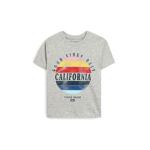 Younger Boy Grey California Short Sleeve T-Shirt