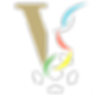 Viareggio Color Logo Only WHITE BALL.png