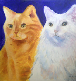Michelles' Cats