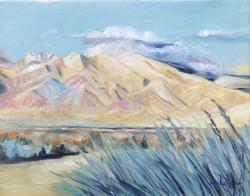 Taos View