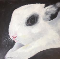 Olivia's Bunny