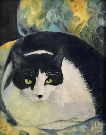Hal's Cat