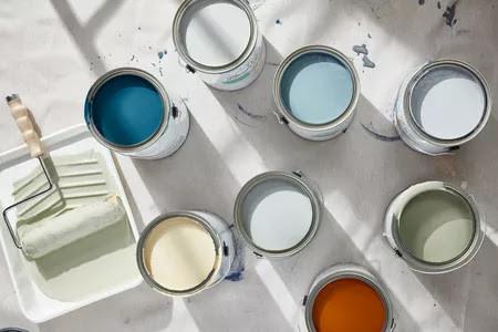 10 Best Interior Paint Colors in 2020