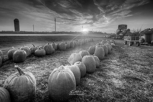 Harvestville Farm-HVLFRM06