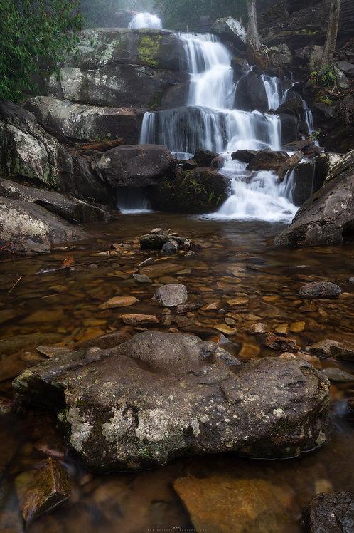 Smokey Mountain National Park- GSM02