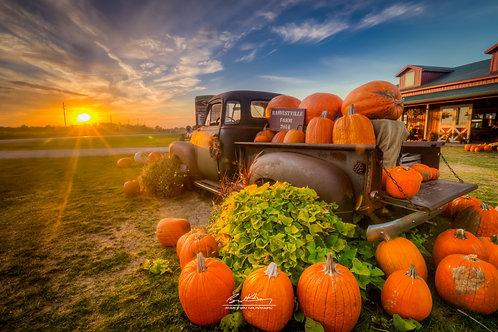 Harvestville Farm-HVLFRM05
