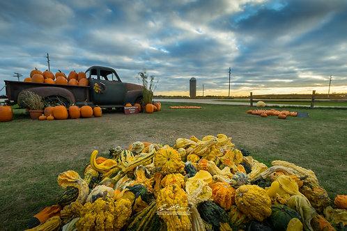 Harvestville Farm-HVLFRM07