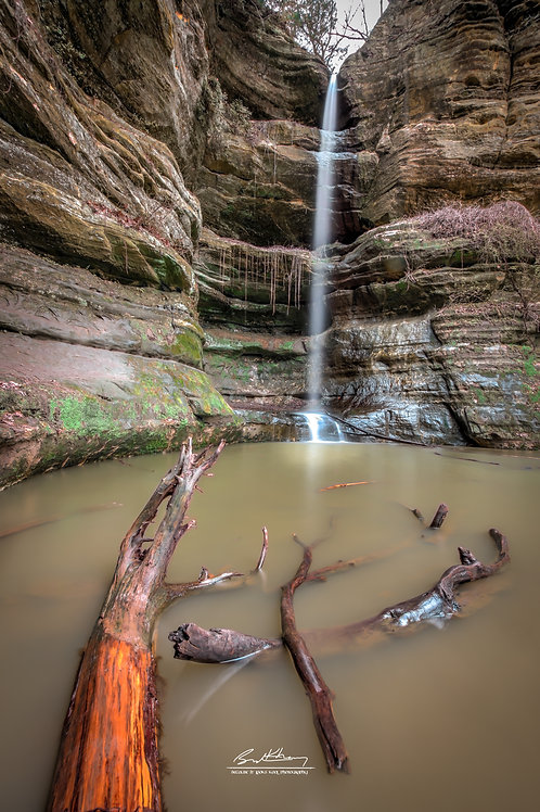 Starved Rock State Park-WLDCAT01