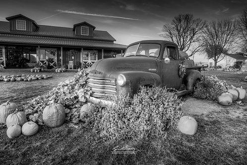Harvestville Farm-HVLFRM02