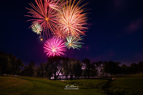 Firework Displays- QFWORKS14