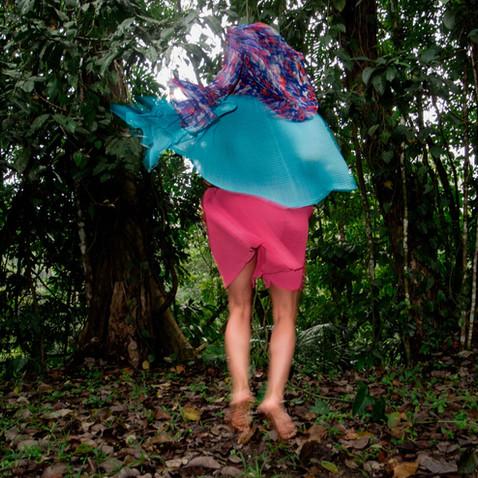Aguacatenango-Selva.jpg