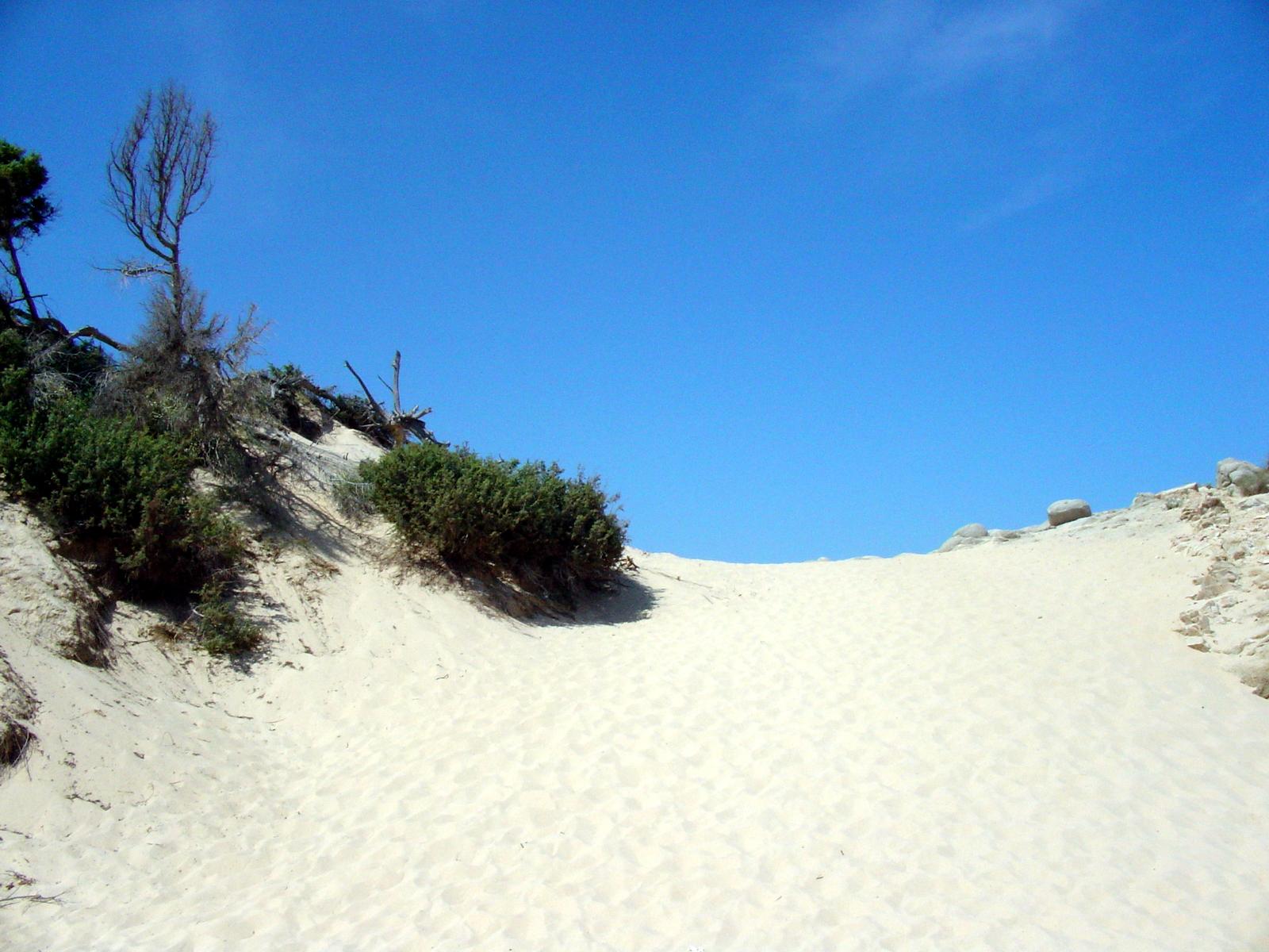 Dune Chia Bithia