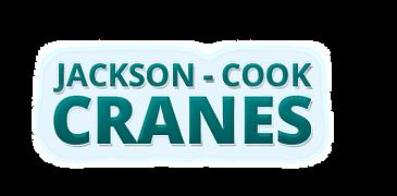 Tallahasee Cranes Jackosn Cook Cranes