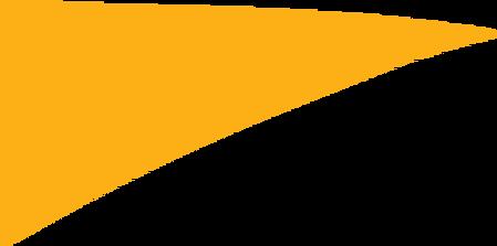 Topbuxus Logo.png