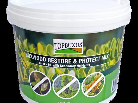 Introducing... TOPBUXUS Boxwood Restore & Protect Mix
