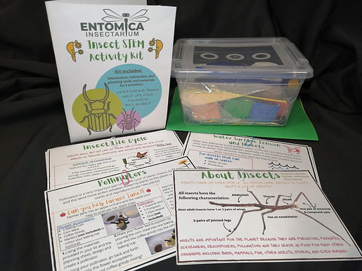 Insect Kits