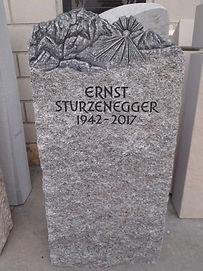 Sturzenegger[636].jpg