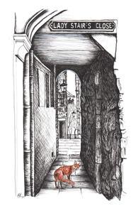 Fox at lady stairs close Edin Inky Fox.j