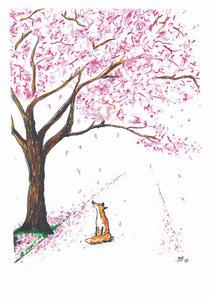 fox under blossom tree edin inky fox.jpe
