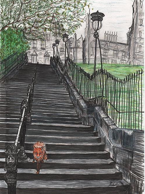Fox on the Playfair Steps