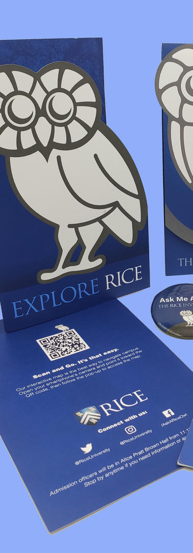 rice_edited.jpg
