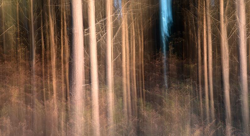 Apparition de la lumière 1