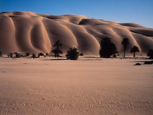 砂漠のお話しをします