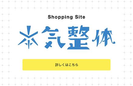ショッピングサイト 本気整体