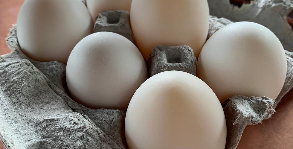 1/2 Dozen Local Duck Eggs