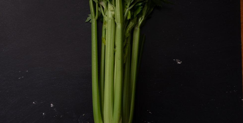 2lb Celery Stalk