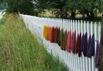 Fence dry.jpg