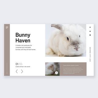 Landing page design-bunny shelter