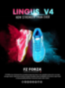 v4_shoes_poster_A4-min-page-001.jpg