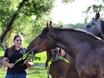 Записывайтесь на семинар Инги СУХОЕВОЙ «Основы первой помощи лошадям»!