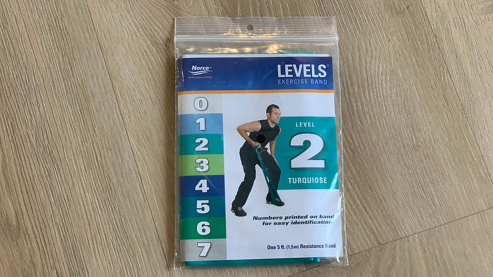 Level 2 Theraband
