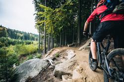 Mountain-biker-riding_12x18_2