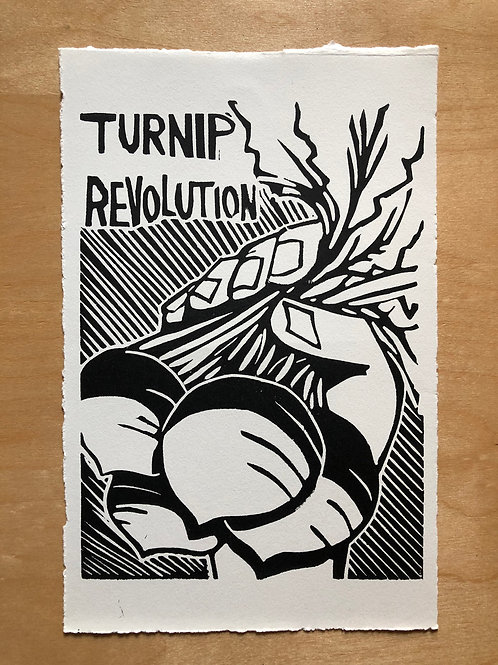 TURNIP REVOLUTION