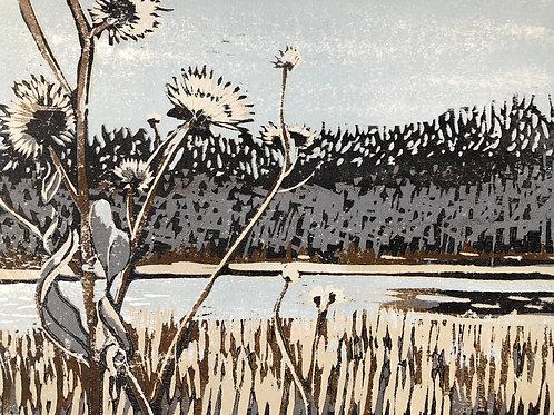 Grey light, winter flowers, Wabash river