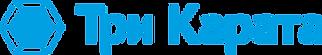 3ct logo.png