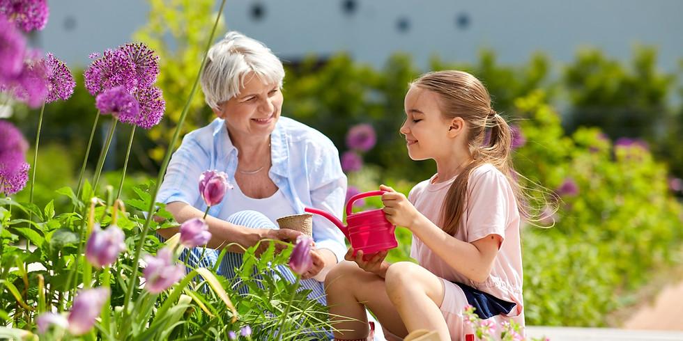 Heilkräuter in der Seniorenpflege