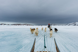 Photographing Greenland