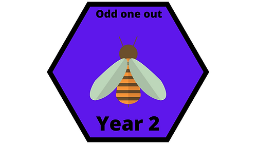 Year 2 - Odd One Out