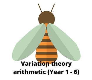 Variation theory arithmetic Year 1 - 6