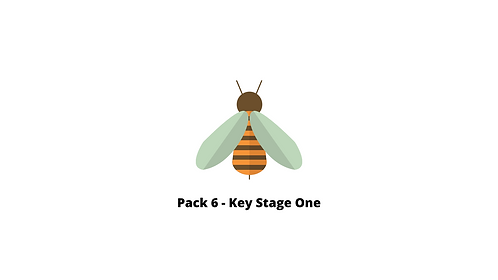 Pack 6 - Arithmetic and reasoning tasks