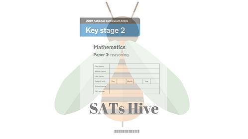 SATs Hive - Year 6 [2019 Paper 3 reasoning]