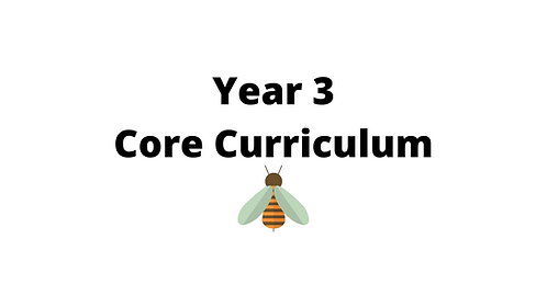 Year 3 Core Concept Lessons
