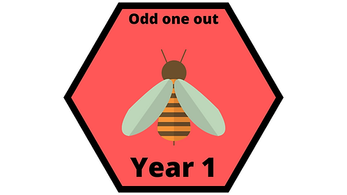 Year 1 Odd One Out
