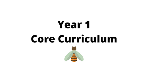 Year 1 Core Concept Lessons